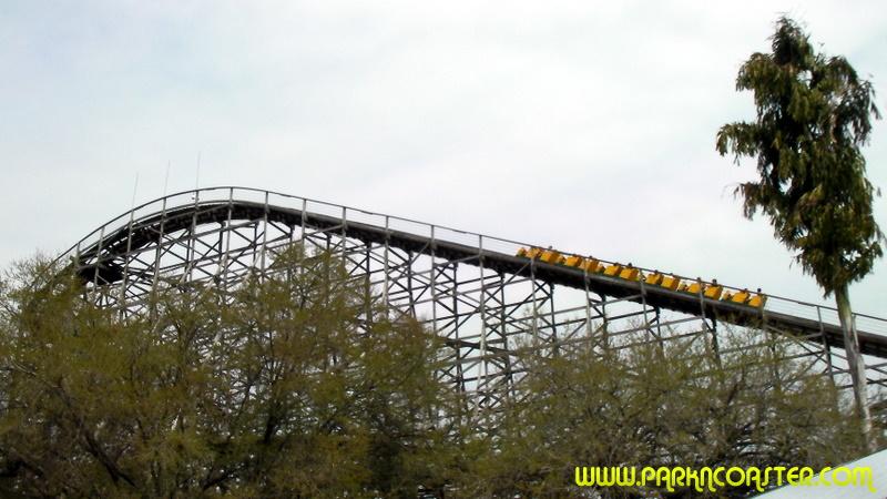 Gwazi In Busch Gardens Tampa Informations Photos