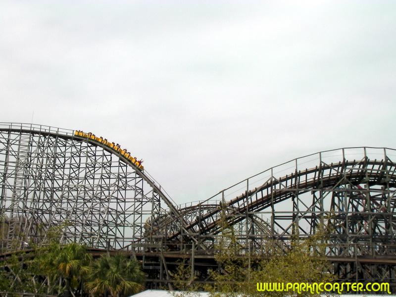 Gwazi In Busch Gardens Tampa Informations Photos Videos Parkncoaster