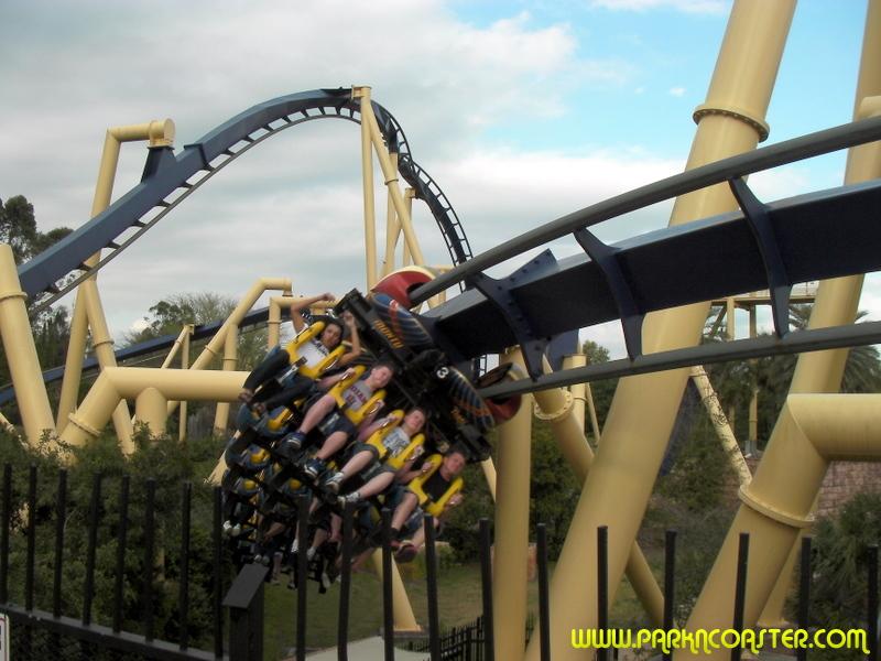 Montu in busch gardens tampa informations photos - Busch gardens tampa roller coasters ...
