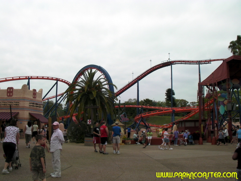 Scorpion In Busch Gardens Tampa Informations Photos Videos Parkncoaster