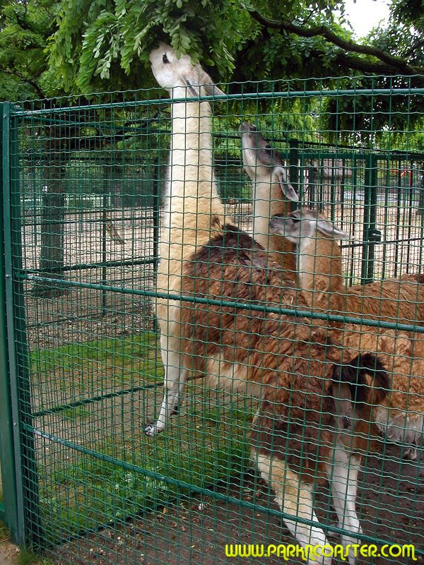 Jardin d 39 acclimatation park maps informations photos - Comment aller au jardin d acclimatation ...